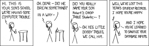 XKCD. Exploits of a mom